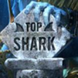 Top Shark Academy 2020/2021