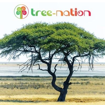 ¡Planta diez árboles para salvar el planeta!  (Donación de 30 euros)
